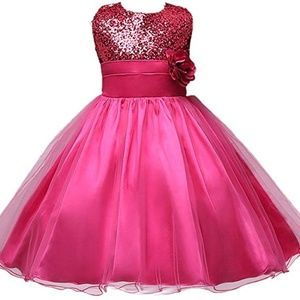 Other - Flower Girl Dress Wedding Party Tulle Sequins